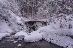 En snöig bro i nordliga Japan royaltyfri bild