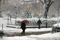 En snöig dag royaltyfri fotografi