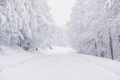 En snöig väg i bergen Arkivbild