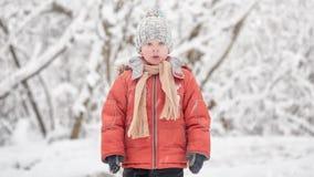 En snöstorm i December Pojken i en snöig skog lager videofilmer