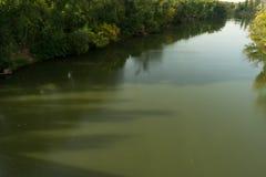 En snabb flodpisuerga med överflödande vegetation på dess banker arkivbild