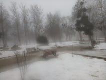 En snow täckt trädgård Royaltyfri Fotografi