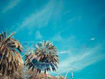 En solig dag av våren i härliga Barcelona Fotoet av en enorm såpbubbla som stiger till himlen i de underbara färgerna av raien arkivbild