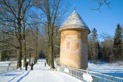 En solig Februari dag i den Pavlovsky slotten parkerar petersburg saint Arkivfoto