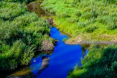En solig sommardag Waiprous by, Alberta, Kanada royaltyfria foton