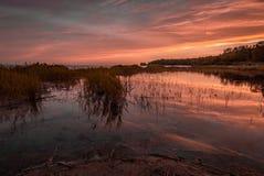 En solnedgång över ett tyst träsk med ljuset som reflekterar på vattnet Arkivbild