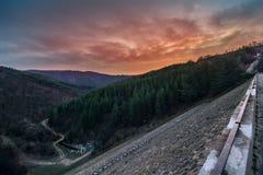 En solnedgång över skogen Royaltyfria Bilder