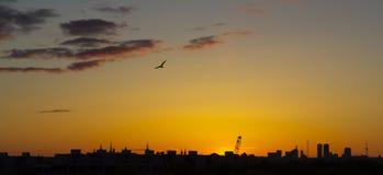 En soluppgång över Tallinn Royaltyfria Bilder