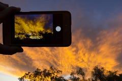 En soluppgång till och med en kamera av en mobiltelefon royaltyfri fotografi