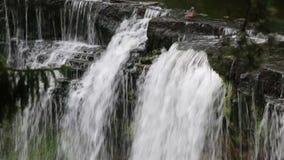En and som spelar i en vattenfall arkivfilmer
