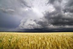 En sommarstorm rullar över de Missouri fälten arkivbild