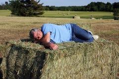 En sommeil sur le foin Photos libres de droits