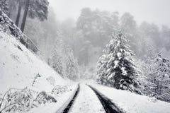 En sonwy och dimmig bergväg Royaltyfria Bilder