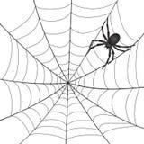 En Spiderweb med spindeln Fotografering för Bildbyråer