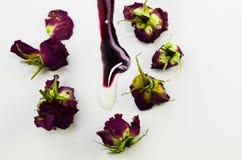 En spilld violett målarfärg, härliga torkade rosor arkivbild