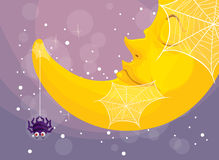 En spindel och en måne Arkivbild