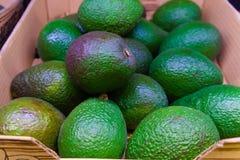 En spjällåda av gröna avokadon i supermarket arkivbilder