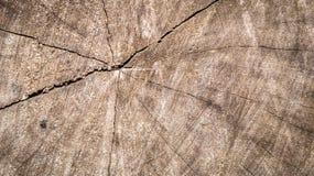 En spricka i mitt av trät Arkivbild