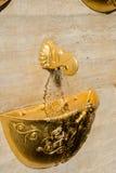 En springbrunnkopp med ett huvud för grip s Royaltyfri Fotografi