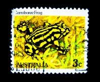 En stämpel som skrivs ut i Australien, visar en bild av den Corroboree grodan på värde på cent 3 Royaltyfri Fotografi