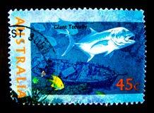 En stämpel som skrivs ut i Australien, visar en bild av fisken för jätten trevally på värde på cent 45 Arkivfoto