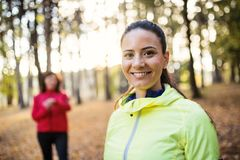 En stående av den kvinnliga löparen som utomhus står i skog i höstnatur arkivbild