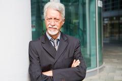 En stående av en utomhus- stilig affärsman fotografering för bildbyråer