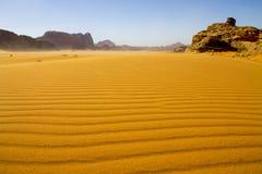 En stående av en kamel i Petra arkivbild