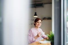 En stående av kvinnan med kaffe som sitter på tabellen i ett kafé, genom att använda bärbara datorn royaltyfria foton