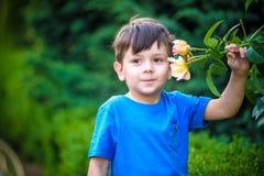 En stående av en pojke som ler och luktar en ros på varm sommardag Den förtjusande ungehållen steg, i hans händer och att se på d royaltyfri bild