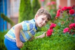 En stående av en pojke som ler och luktar en ros på varm sommardag Den förtjusande ungehållen steg, i hans händer och att se på d fotografering för bildbyråer