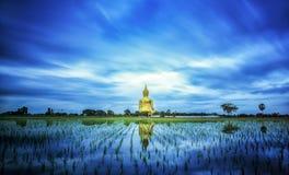 En störst Buddha i Thailand Arkivfoton