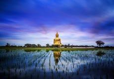 En störst Buddha i Thailand Arkivbilder