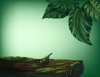 En stam som täckas med alger royaltyfri illustrationer