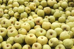 En stapel av pears Royaltyfri Bild