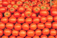 En stapel av tomater Arkivfoto