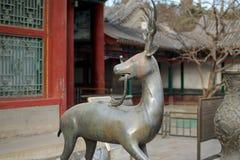 En staty av ett Qilin anseende för sommarslotten i Peking Fotografering för Bildbyråer
