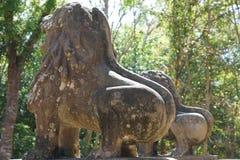 stora afrikanska kuk bilder