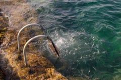 En stege i vattenhavet royaltyfri fotografi