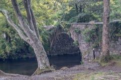 En stenbro över Afonen Ogwen, i Snowdonia royaltyfria foton