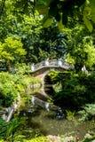 En stenbro över en flod med högar av växter och träd arkivbilder