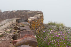 En stenvägg bredvid rosa och vita blommor på en dimmig dag Arkivbild