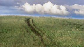 En stigande landsväg i högväxt gräs i Altai berg, Kasakhstan, på försommarmorgon med dramatisk cloudscape Royaltyfri Fotografi