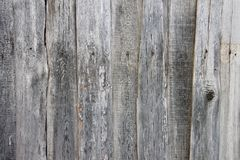 En stilfull tappningbakgrund: en trähusvägg som göras av strålen av gul mossa som täckas med blått, målar Royaltyfria Bilder