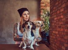 En stilfull tattoed blond kvinnlig i t-skjorta och jeans omfamnar två gulliga hundkapplöpning Fotografering för Bildbyråer