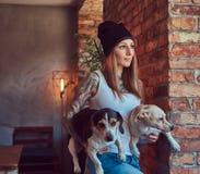 En stilfull tattoed blond kvinnlig i t-skjorta och jeans rymmer två gulliga hundkapplöpning Arkivfoton