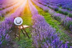 En stol med en bakfull hatt mellan den blommande lavendeln ror under sommarsolnedgångstrålarna Dröm- och koppla av begreppet Royaltyfri Bild