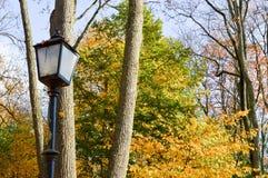 En stor belysning för lampa för storgata för järnmetallsvart i parkerar nolla arkivfoto