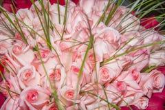 En stor bukett av rosa rosor Royaltyfria Bilder