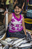 En stor fisk i MYANMAR - BURMA Royaltyfri Foto
